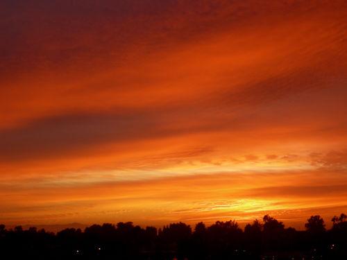 Sunset2 11-8-08